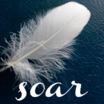 May 2013: #SOAR Wrap-up