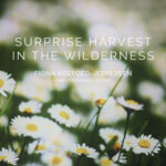 Surprise Harvest in the Wilderness