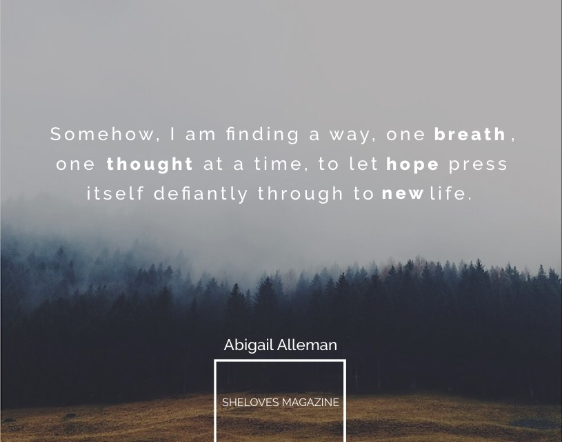 Abigail Alleman -New Life3