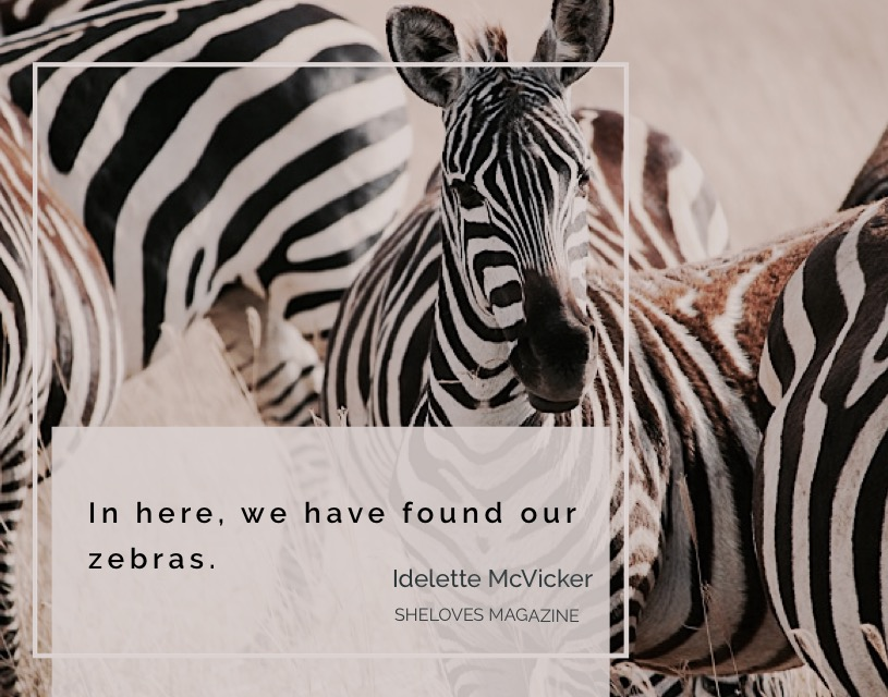 Idelette McVicker -Find Your Zebras3