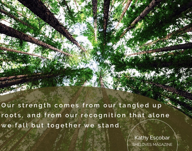 Kathy Escobar -Solidarity like Redwoods3