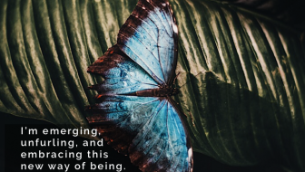 Invited to Transformation: A Chrysalis Story