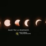 A Bite Out of the Sun: An Eclipse Story