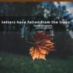When Leaves Prophesy